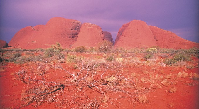 Kata Tjuta (The Olgas)