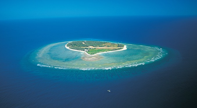 Lady Elliot Island
