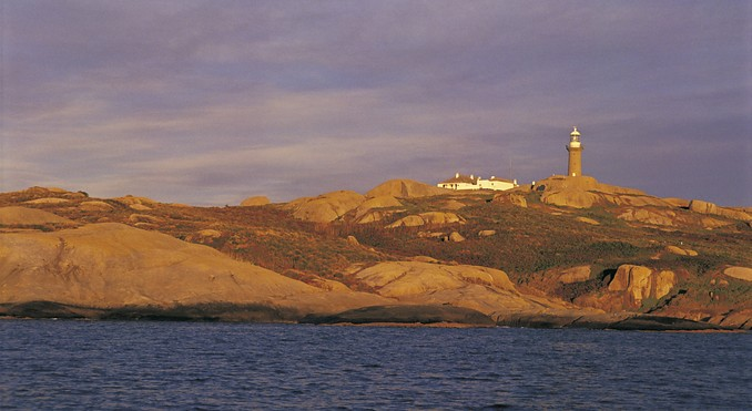 Montague Island