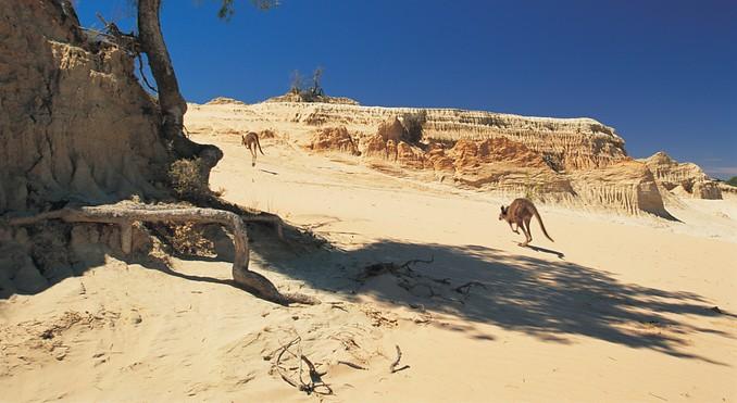 Mungo National Park Australia  city images : Просмотр темы Общение Удивляйтесь ...