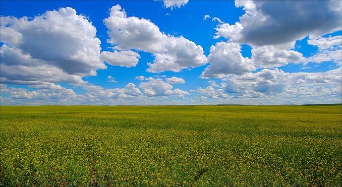 grasslands-national-park-of-canada-8752.