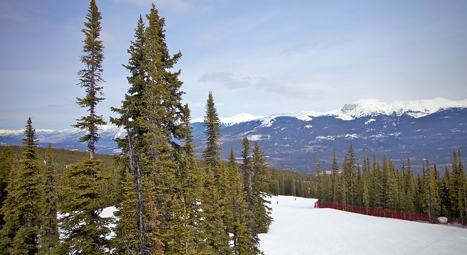 Marmot Basin