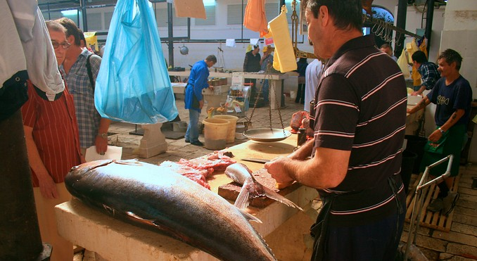 Split Fish Markets