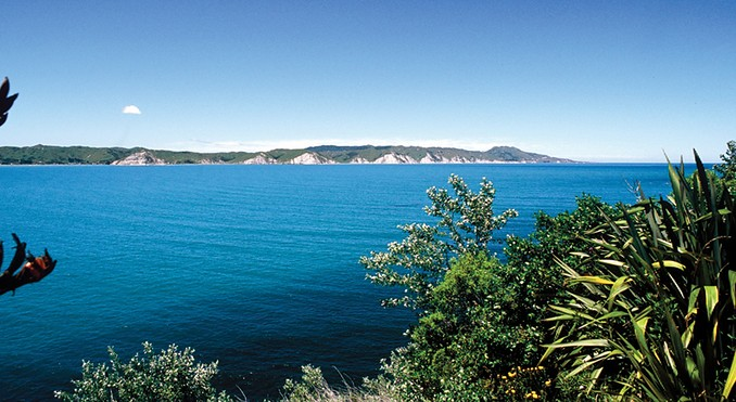 Image courtesy of Venture Hawke's Bay