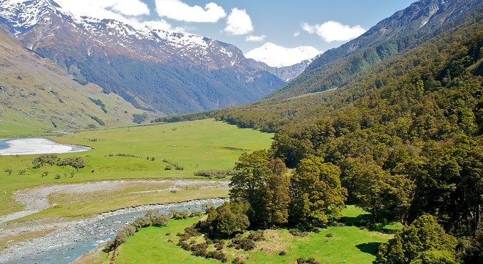Rob Roy Glacier Track