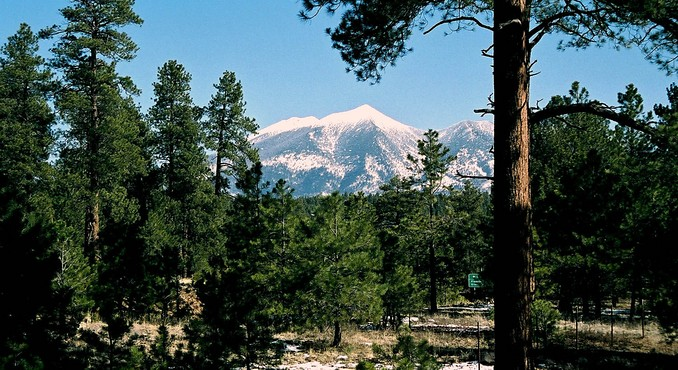 Image Courtesy of Flagstaff Convention and Visitors Bureau and The Arizona Snowbowl